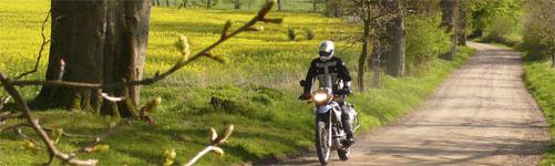 Durch die Felder der Rapsblüte in Holstein