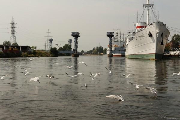 BaltikumC2014-08-04 (1)